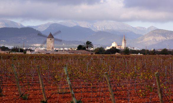 Landwirtschaftliches Mallorca